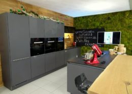 Moss wall design with hill moss - color nature - in a kitchen