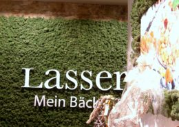 Special wall design with reindeer moss - color mossgreen in a bakery
