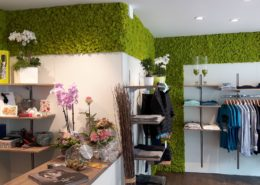 Special wall design with reindeer moss - color springgreen - clothing business