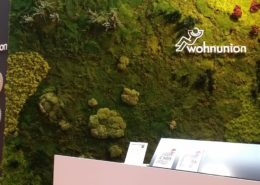 Moss wall design with a mix of different mosses, ferns and flowers on a trade fair in salzburg